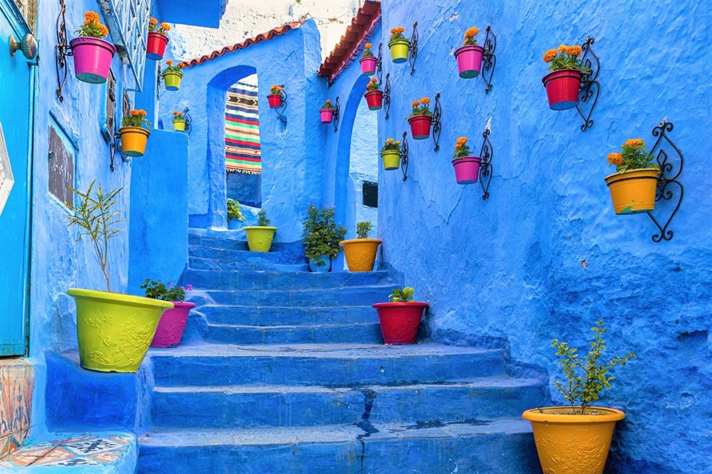 Blue staircase and wall decorated with colourful flowerpots, Chefchaouen medina in Morocco.